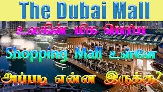 Dubai Mall 4 Hour Walking Tour