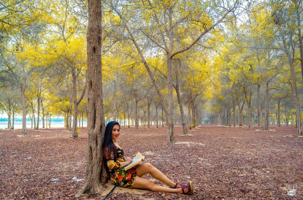 Landscape photography abu dhabi